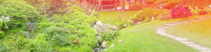 Giardiniere per sistemare giardino ville taglio erba - Sistemare il giardino ...